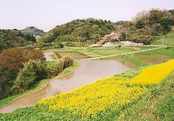 千葉県安房郡